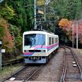 Photos: 2019_1124_134105 二ノ瀬駅