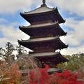 Photos: 2019_1130_122722 仁和寺