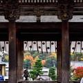 Photos: 2019_1130_123036 仁和寺