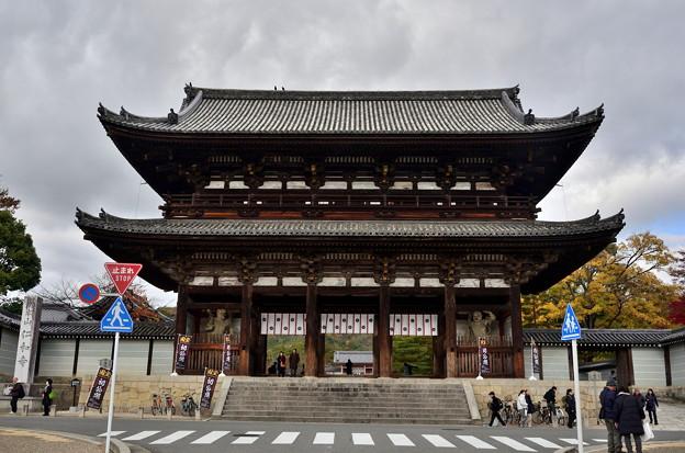 2019_1130_123318 仁和寺