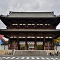 Photos: 2019_1130_123318 仁和寺