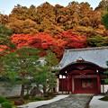 Photos: 2019_1119_162516 南禅寺