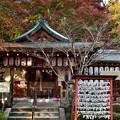 2019_1119_152041 熊野若王子神社