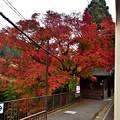 Photos: 2019_1124_134047 二ノ瀬駅