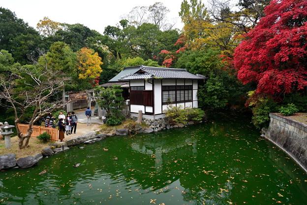 2019_1124_152202 厳島神社