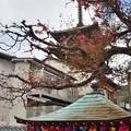 2020_0113_134552 八坂庚申堂