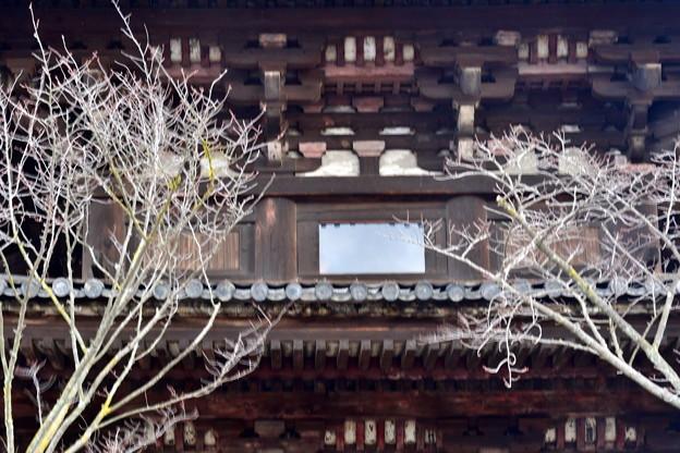 2020_0113_135008 法観寺