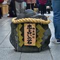 Photos: 2020_0113_144216 恋占いの石