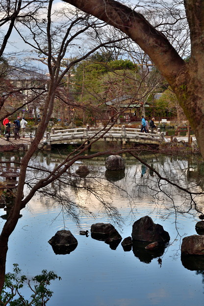2020_0113_154753 円山公園 ひょうたん池