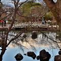 Photos: 2020_0113_154753 円山公園 ひょうたん池