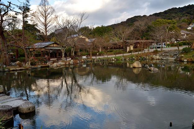 2020_0113_154917 円山公園 ひょうたん池