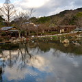 Photos: 2020_0113_154917 円山公園 ひょうたん池