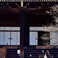 Photos: 2020_0126_130136 冬の真如堂