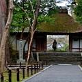 Photos: 2020_0126_142017_法然院