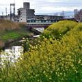 Photos: 2020_0329_155229 舟橋川