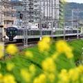 Photos: 2020_0419_170555 3000系特急電車
