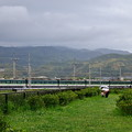 Photos: 2020_0510_161343 台場内を通過する京阪電車