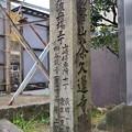 Photos: 2020_0510_153743 橋本渡舟場