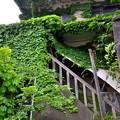 Photos: 2020_0510_153530 橋本遊郭歌舞練場