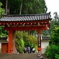 Photos: 2020_0612_102824 三室戸寺