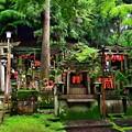 2020_0614_151420 御膳谷奉拝所周囲のお塚