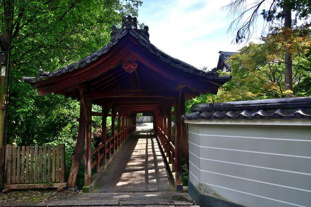 2020_0809_151129 偃月橋