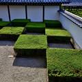 2020_0809_155705 八相庭園 西庭