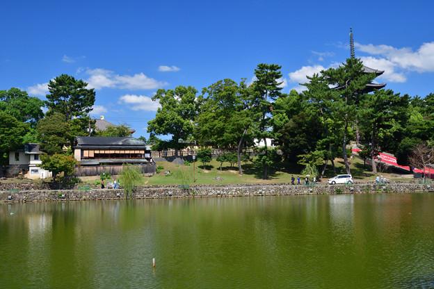 2020_0921_125416 猿沢池