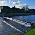 Photos: 2020_0927_162237 京 鴨川の流れ