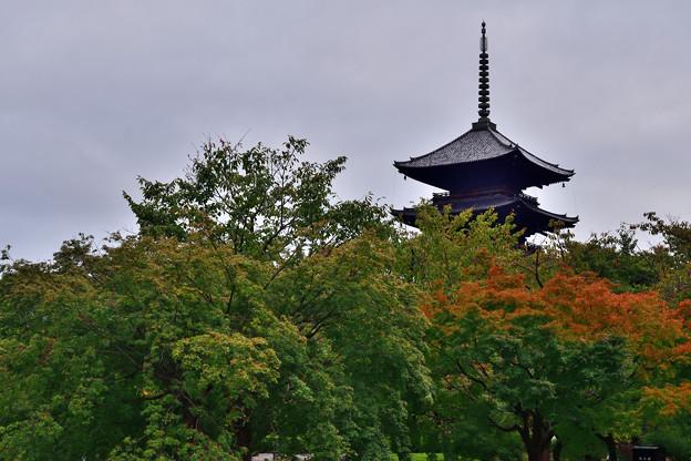 2020_1010_154526 東寺