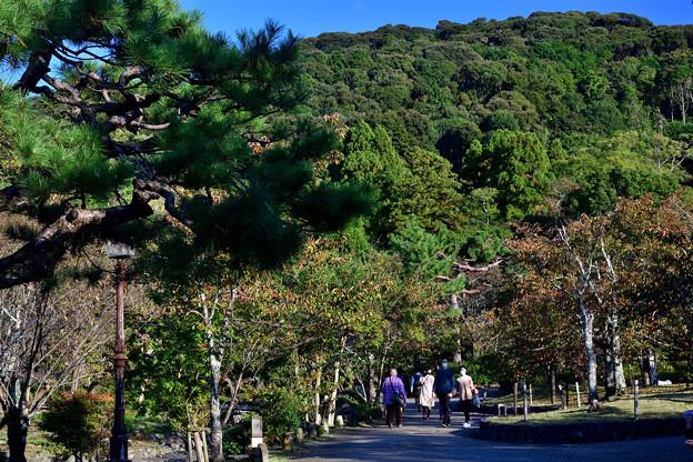 2020_1025_154725 京の東山