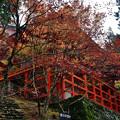 2020_1108_124639 横川中堂