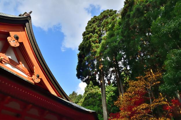 2020_1108_121126 横川中堂