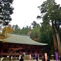Photos: 2020_1108_132554 釈迦堂