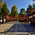 2020_1115_103145 隠元さんの萬福寺