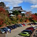 Photos: 2020_1121_124955 善峯寺