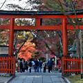 2020_1121_143644 大原野神社