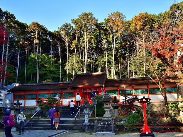 2020_1121_142330 大原野神社