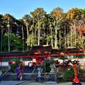 Photos: 2020_1121_142330 大原野神社