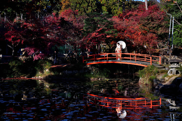 Photos: 2020_1121_143936 大原野神社
