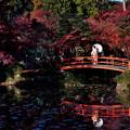 2020_1121_143936 大原野神社