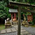 2020_1122_154537 大豊神社