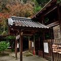 2020_1122_154138 大豊神社