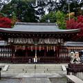 2020_1122_152535 熊野若王子神社