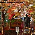 2020_1123_154040 今熊野観音寺