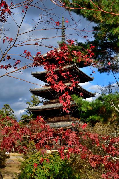 Photos: 2020_1129_150705 仁和寺五重塔