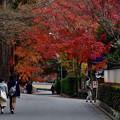 Photos: 2020_1213_140521 東福寺日下門前