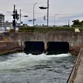 Photos: 2020_1213_132530 鴨川運河 暗渠から出口