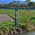 Photos: 2020_1206_143715 東高瀬川 人道橋