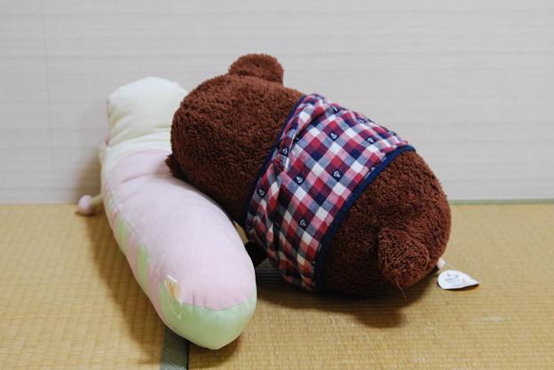 2010_1024_204903 くまくんとチンさんお昼寝中